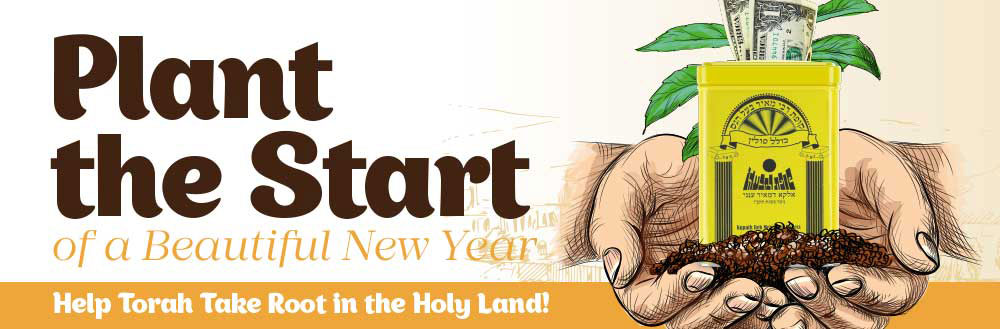 Plant the Start